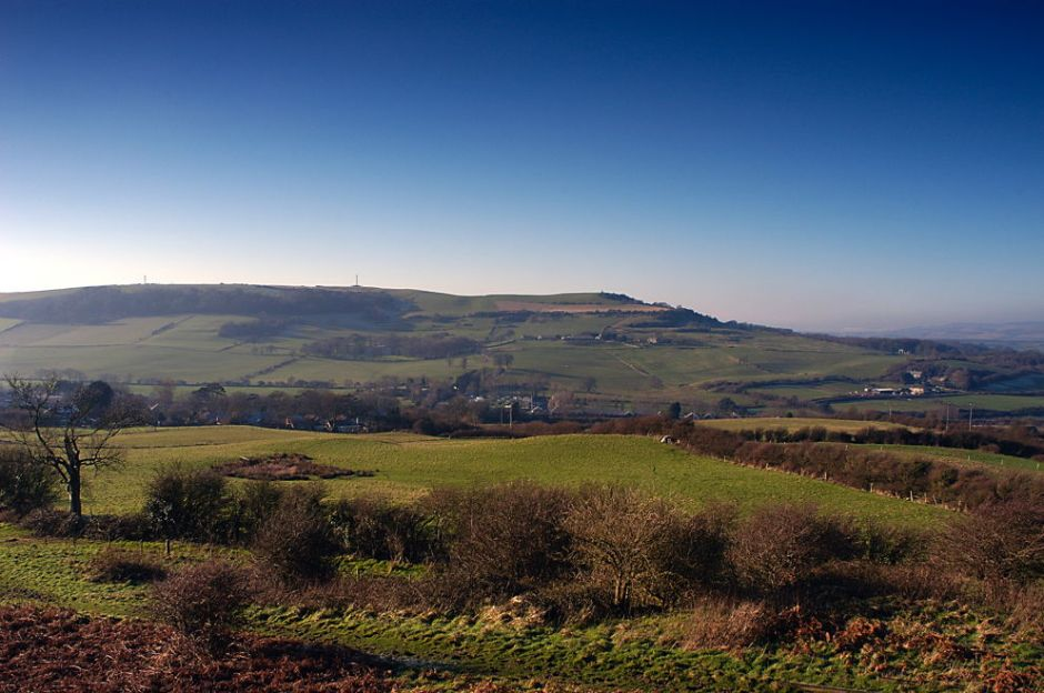 Downs around Wroxall, Isle of Wight, January. © 2015 EHN & DIJ Oakley.