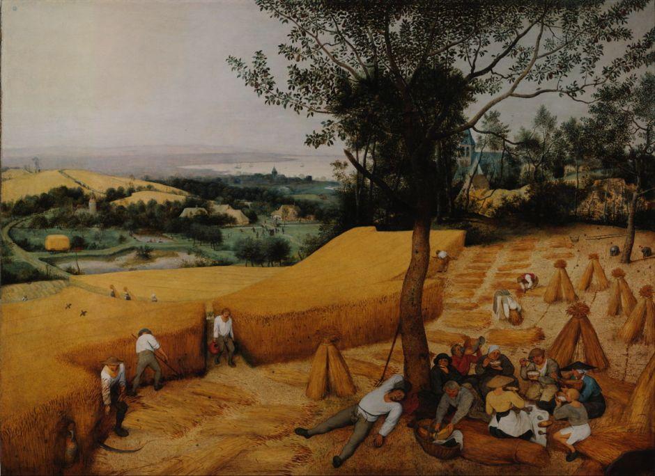 bruegelharvesters
