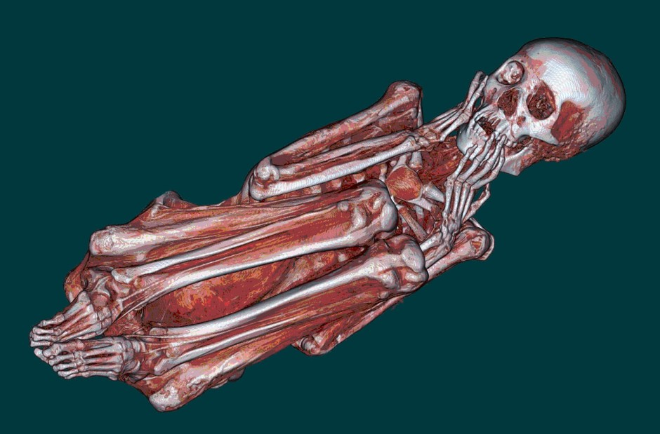 Three dimensional model of a Peruvian mummy from CT scans. By U.S. Navy photo, via Wikimedia Commons.