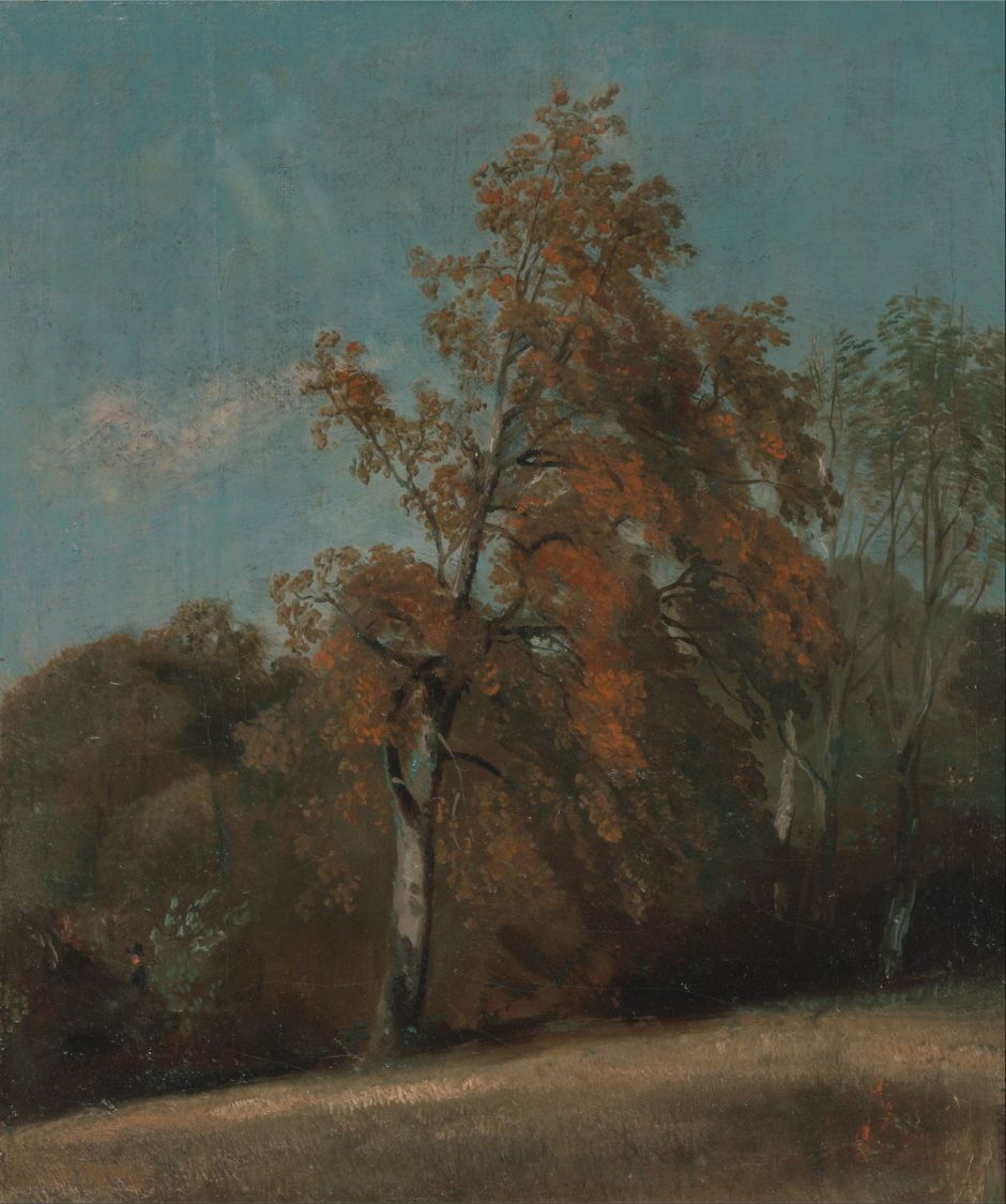John Constable (1776–1837), Study of an Ash Tree (1801-3 or 1810-30), oil on canvas laid to artist's board, 39.4 x 29.8 cm, Yale Center for British Art, New Haven, CT. Wikimedia Commons.