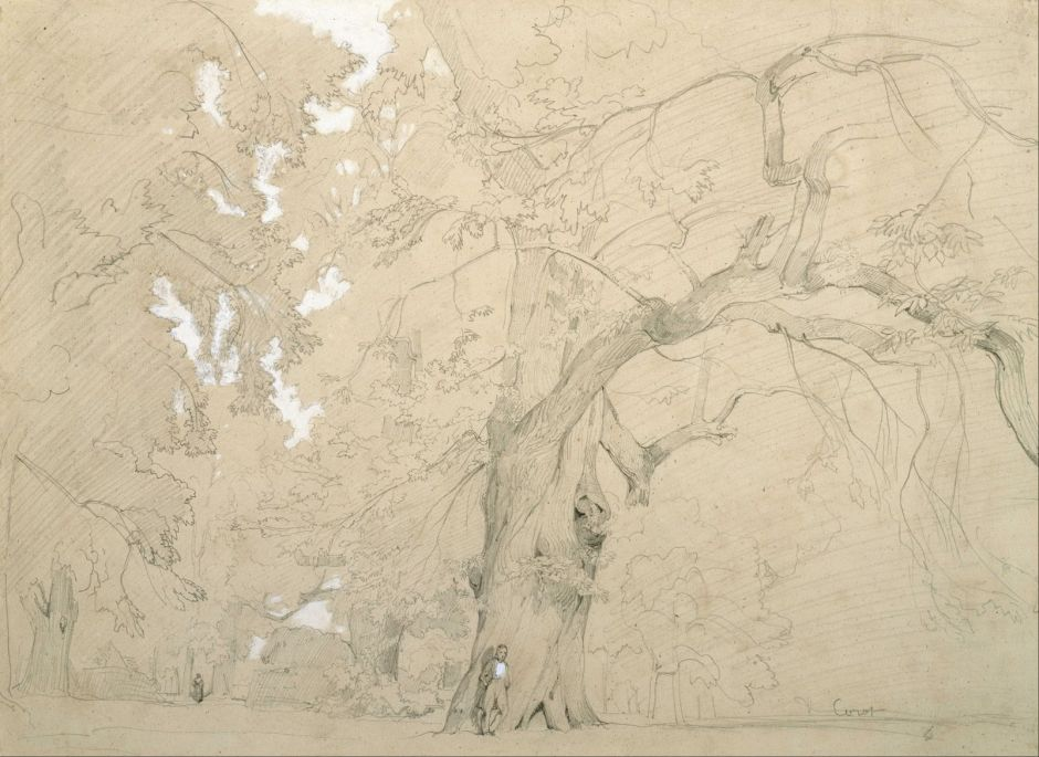 Jean-Baptiste-Camille Corot (1796–1875), Young Man in front of a Great Oak (1840-2), graphite heightened with white gouache on tan paper, 29.2 x 39.8 cm, Museum of Fine Arts, Houston, TX. Wikimedia Commons.