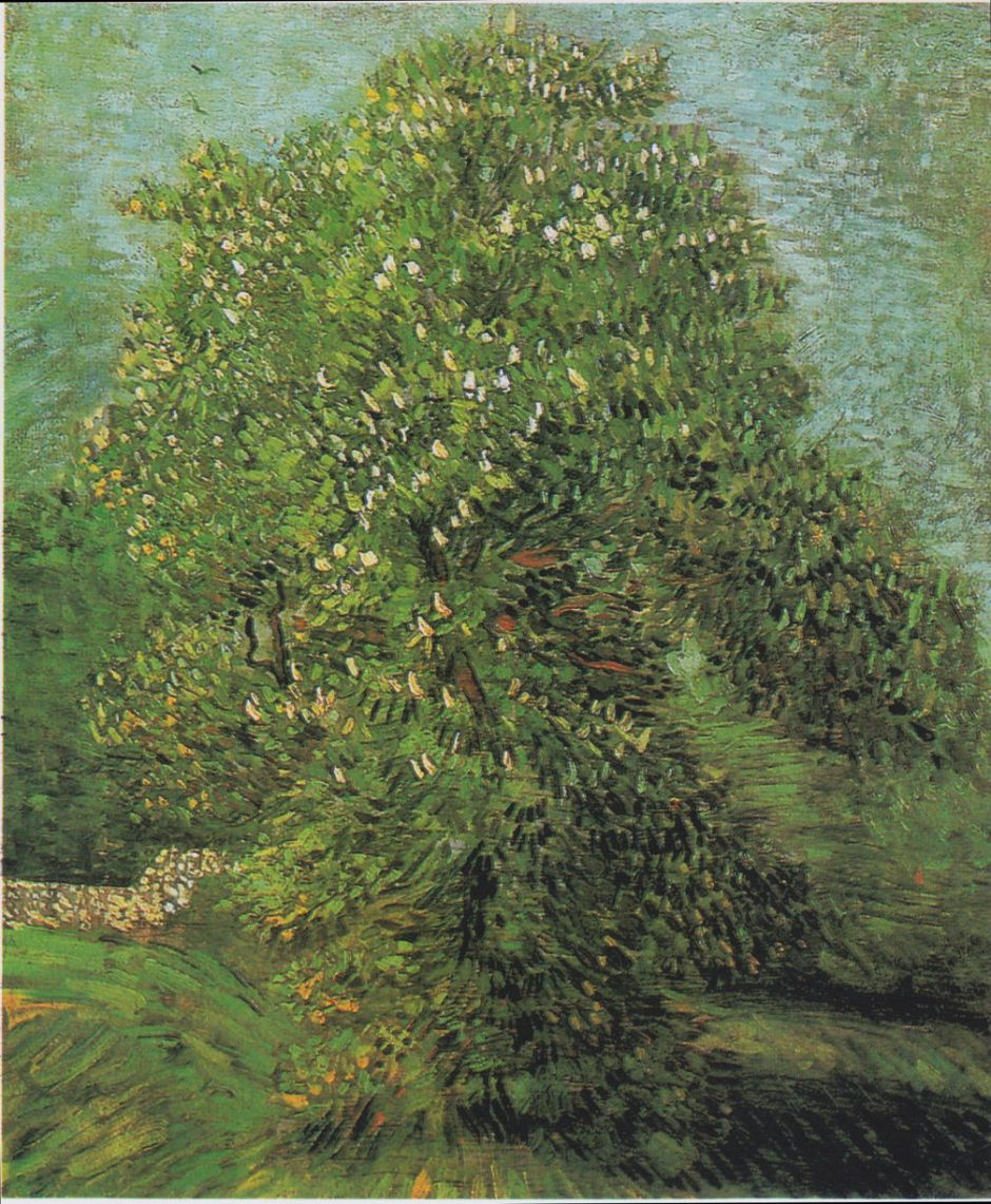 Vincent van Gogh (1853–1890), Blossoming Chestnut Tree (1887), oil on canvas, 56 x 46.5 cm, Van Gogh Museum, Amsterdam. Wikimedia Commons.
