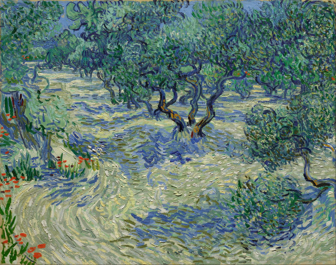Trees In The Landscape 5 Vincent Van Gogh And Swirling Cypresses