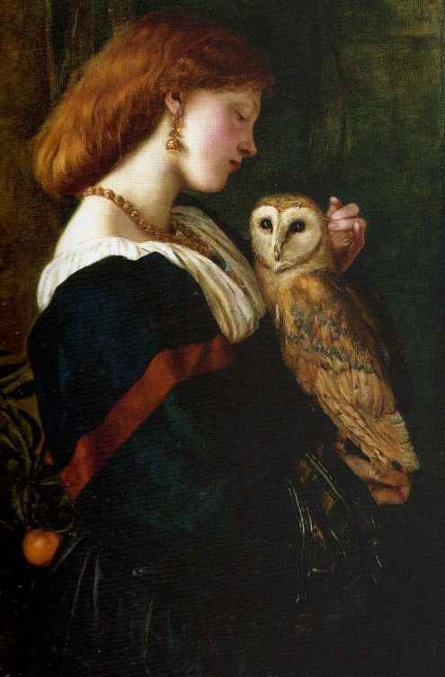 Owls and the reading of Bosch's paintings 1 – The Eclectic Light Company