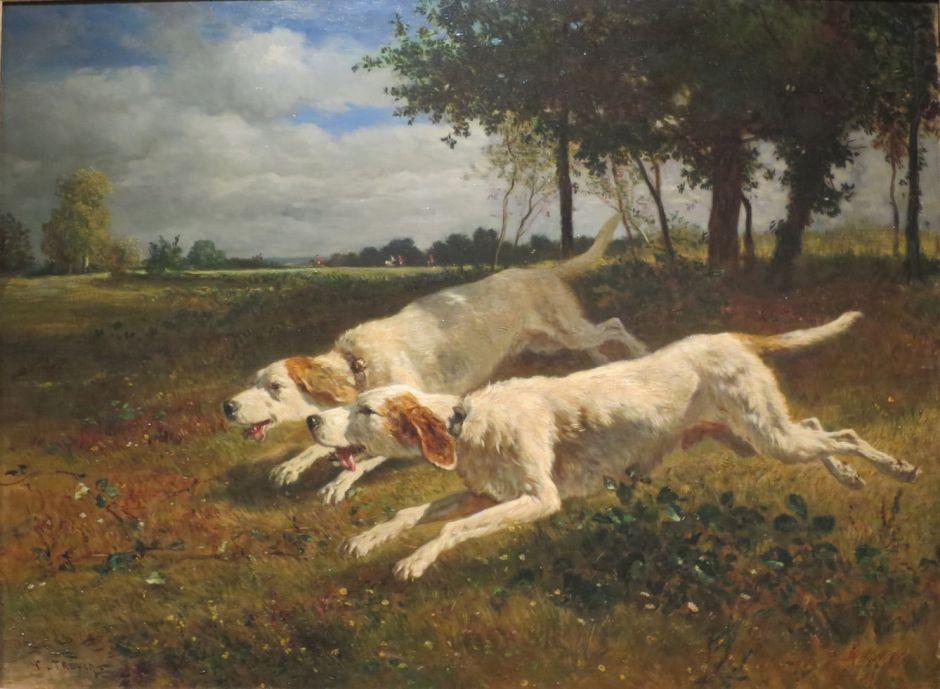 troyonrunningdogs