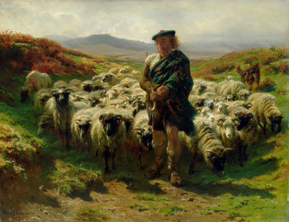 bonheurhighlandshepherd