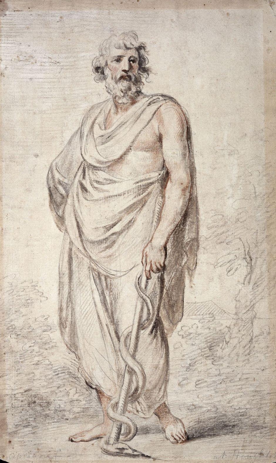 ciprianiaesculapius