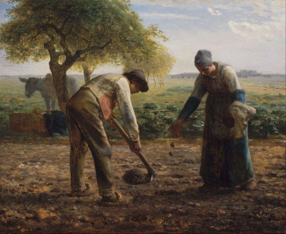 milletpotatoplanters