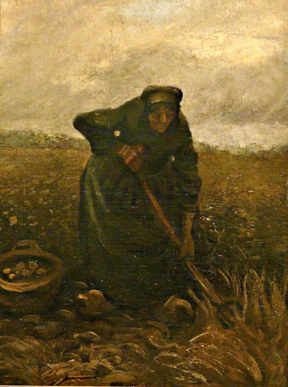 vangoghpotatoharvest