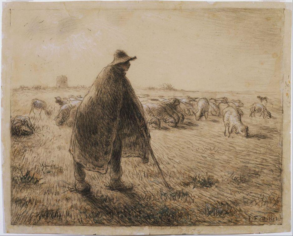 milletshepherd