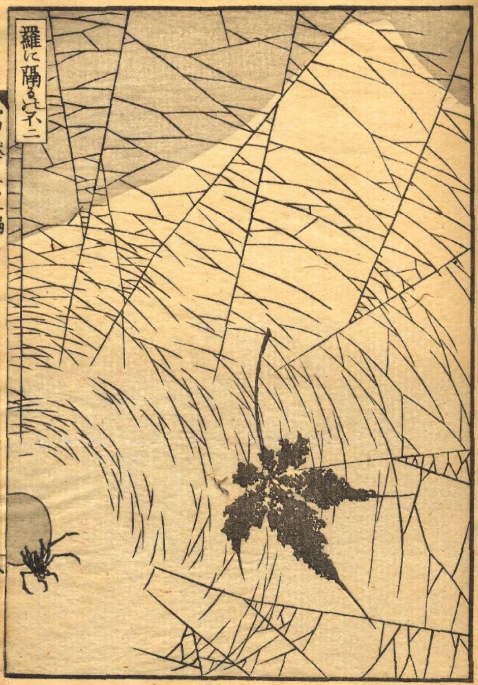 hokusaimtfujibehindspiderweb