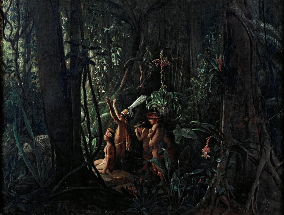 biardamazonianindians