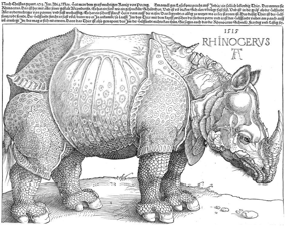 durerrhinoceros1515