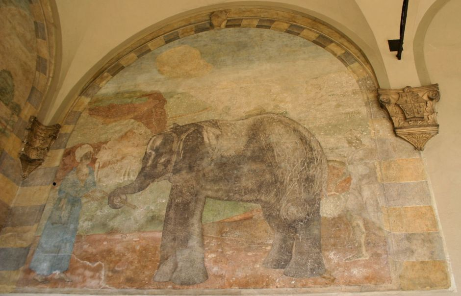 anonelephantfresco