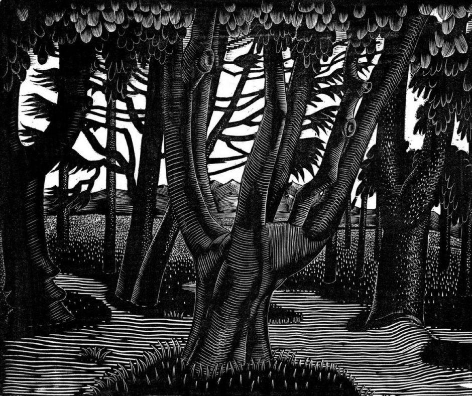 raviliouswoodlandflorence