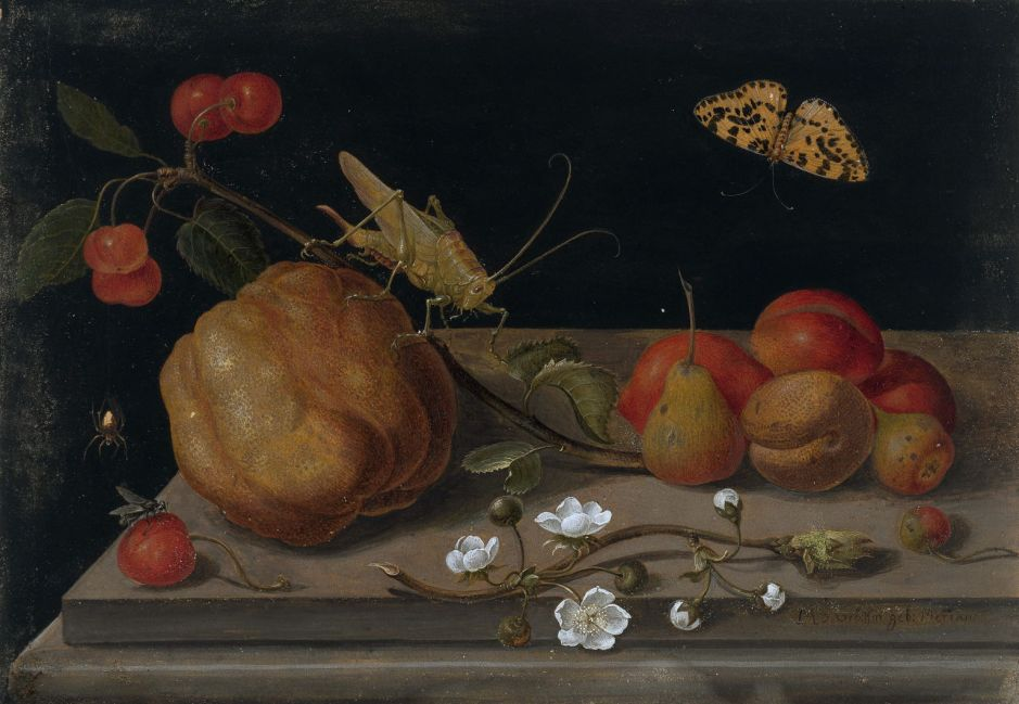 Still life with fruit, a grasshoper and a butterfly, by Maria Sibylla Merian